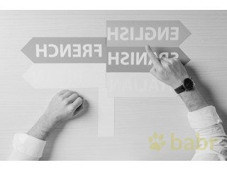 Do you need an interpreter with a philological education in Saransk?